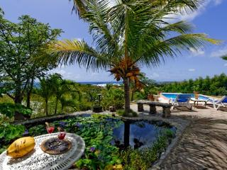 Great sea view, romantic cottage , private pool - Cul de Sac vacation rentals