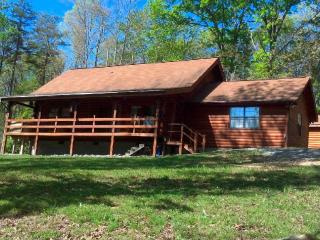 Tennessee Log Cabin on 10 acres with Pond - Dunlap vacation rentals