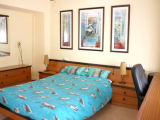 VLC Flat 5min from Science and Arts - Valencia Province vacation rentals