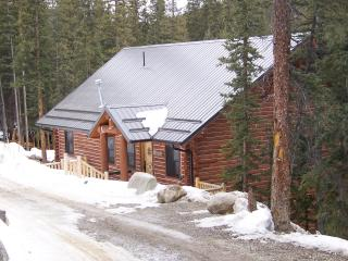 Gorgeous Mountain Getaway, 3 Bedroom/2 Bath For Up - Fairplay vacation rentals