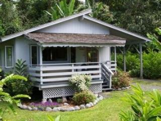 Private and secluded cottage with outdoor hot tub - Hana vacation rentals