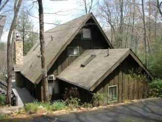 Mountain Home By Mt Mitchell Golf Course - Burnsville vacation rentals