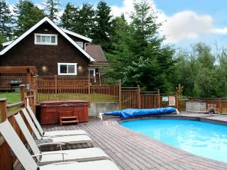 Privacy--lakefront lodge with hot tub, pool, dock - Lakebay vacation rentals