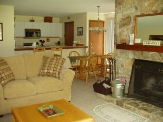 Ski in, ski out Seasons condo on Mount Snow - Southeastern Vermont vacation rentals