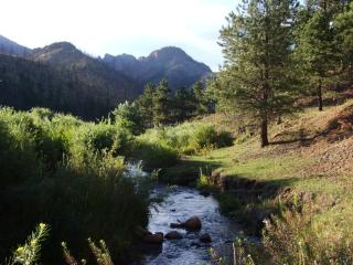FISHING-HIKING-ATV TRAILS AND MORE!!! - Woodland Park vacation rentals