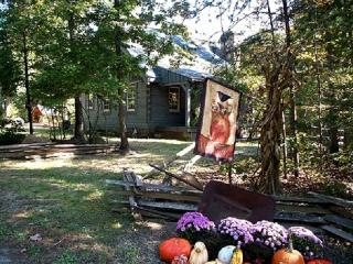 PRIVATE LOG CABIN ON 66 WOODED ACRES - Scottsville vacation rentals
