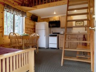 Affordable Cabin in Pines - South Dakota vacation rentals