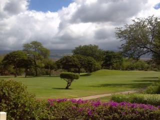 2 Bedroom with Amazing Golf Course & Mountain View - Wailea-Makena vacation rentals