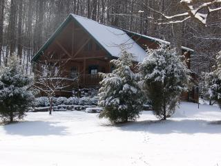 Wise Old Owl Cabin Last Minute Avail Oct 3-6 Call! - Indiana vacation rentals