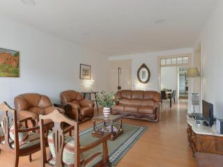 Traditional spacious family type in best quarter - Lisbon vacation rentals