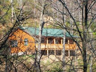 GREAT MOUNTAIN VIEW/CABIN/Reviews! - Maggie Valley vacation rentals