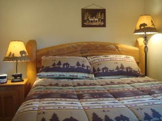 RUSTIC CABIN IN HISTORIC TOWN HOT SPRINGS/RAFTING - Idaho Springs vacation rentals