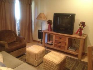 Quiet Sunny Luxury town center Studio by shuttle - Mammoth Lakes vacation rentals