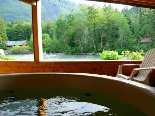 Romantic cabin on the Skykomish River with hot tub - Baring vacation rentals