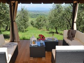 Dream like place in the heart of Tuscany - Montaione vacation rentals