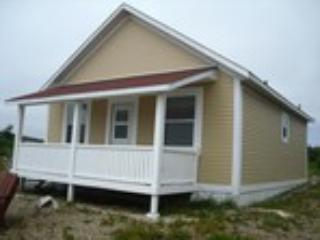 Pam Oldford owner of Island view cabin - Image
