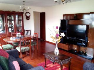 Bright And Ample Apartment In Beautful Barranco - Barranco vacation rentals
