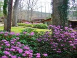 Asheville Cabins of Willow Winds  - Image