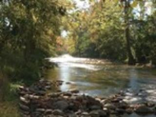 Our property sits along the Little Pigeon River - Misty Perry