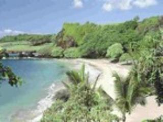 Hamoa Beach, just steps awa! - Hana Oceanfront Cottages owners Sandi and Dan