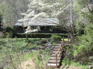 Family Cabin and waterfall in springtime - Preston's Thicket Cabins-Pet Friendly, Wheelchair accessible