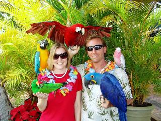 With the parrots in Lahaina - Steve and Karen Hotchkiss