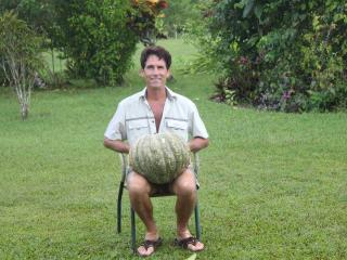 SigaSiga Pumpkins can be BIG! - SigaSiga Sands Cottages