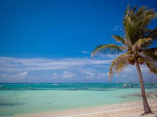 Akumal's pristine white sand beside a sea of turquoise water - Akumal Direct Reservations