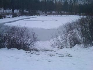 Pond in the winter time - Mr. William McCord