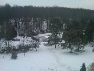 View of pond from master bedroom - Mr. William McCord