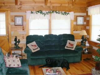 Comfortable reclining sofas in Family Room - Alice Curnick