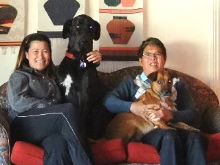 Honey, the Great Dane, and Bruno, the staffy-cross, with Owners/Managers, Shirley and Douglas - Istana Alfred Cove