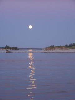 full moon over the bay - Clyde V Fisher