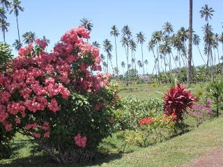 Colorful Gardens surround your Cottage - SigaSiga Sands Cottages