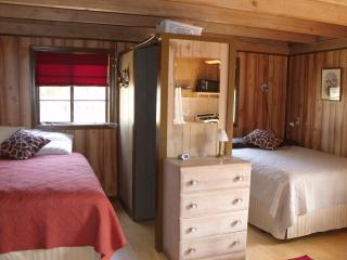 Cabin #1 with 2 NEW Queen Beds - Christina Hinson