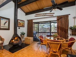 Herbage Townhome: 3 suites.  Private Hot Tub. - Steamboat Springs vacation rentals