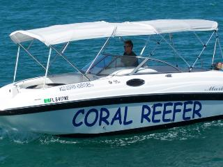 The Coral Reefer ~ Wild Dolphin Advenures.com - Dave Lewis