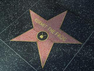 We are Surrounded by the Hollywood Walk of Fame! - Bed and Bay Residence Inn