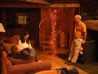 Christmas in the cabin - Elizabeth Ford