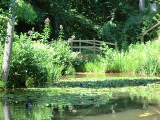 The pond at Preston's Thicket - Preston's Thicket Cabins-Pet Friendly, Wheelchair accessible