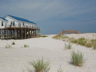 As about our Pet-friendly Beach House Rentals! - Dauphin Island Beach Rentals, LLC