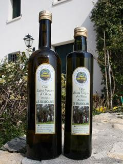 Our Certified Organic Olive Oil - Lidia Pasqualotto
