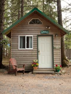 Beach House Camping Cabin/Sleeps up to 3 people/Heated, office size frig, microwave/portable toilet - Beach House Rentals, Seward/Claire Horton, Owner