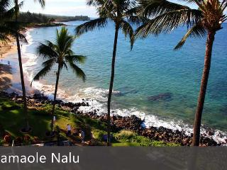 Kameole Nalu - Ali'i Resorts, LLC