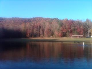 Fall colors - The Woods at Buc