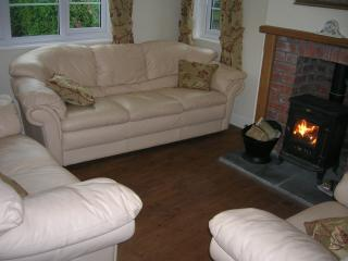 Lounge, 3 seater sofa, 2 seater sofa & single chair, along with wood burner and 32