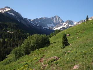 Capitol Peak Valley - First Choice Properties & Management, Inc.