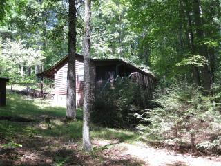 Salamander Hill    one bedroom cabin in the woods - Brevard vacation rentals