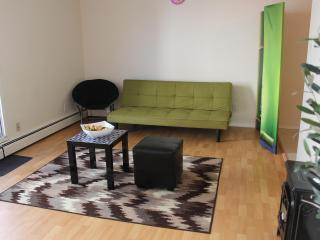 Sunny 2 BD in downtown location of Edmonton - Edmonton vacation rentals
