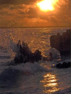 the sun comes up over the sea - Jerilyn J. Hirsch